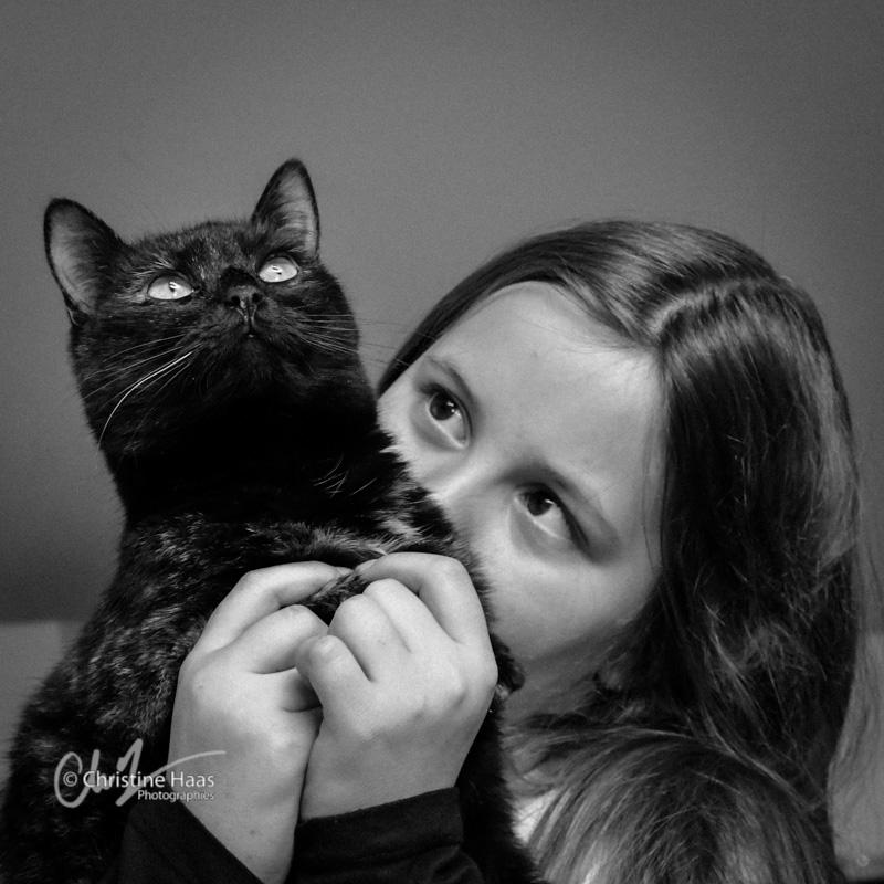 portrait avec votre chat chien cheval. Black Bedroom Furniture Sets. Home Design Ideas